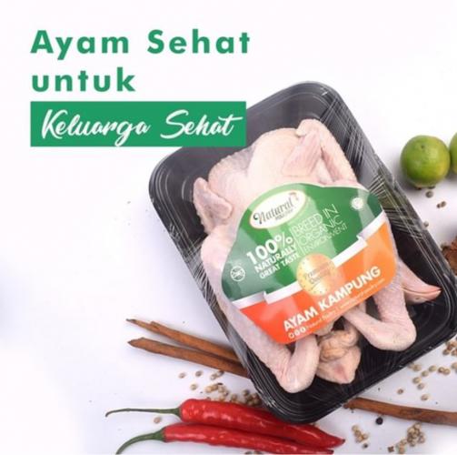 ayam probiotik natural poultry