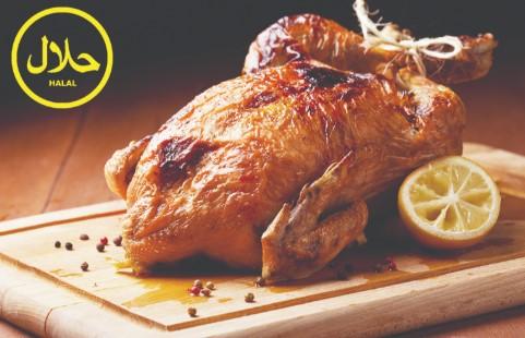 ayam halal