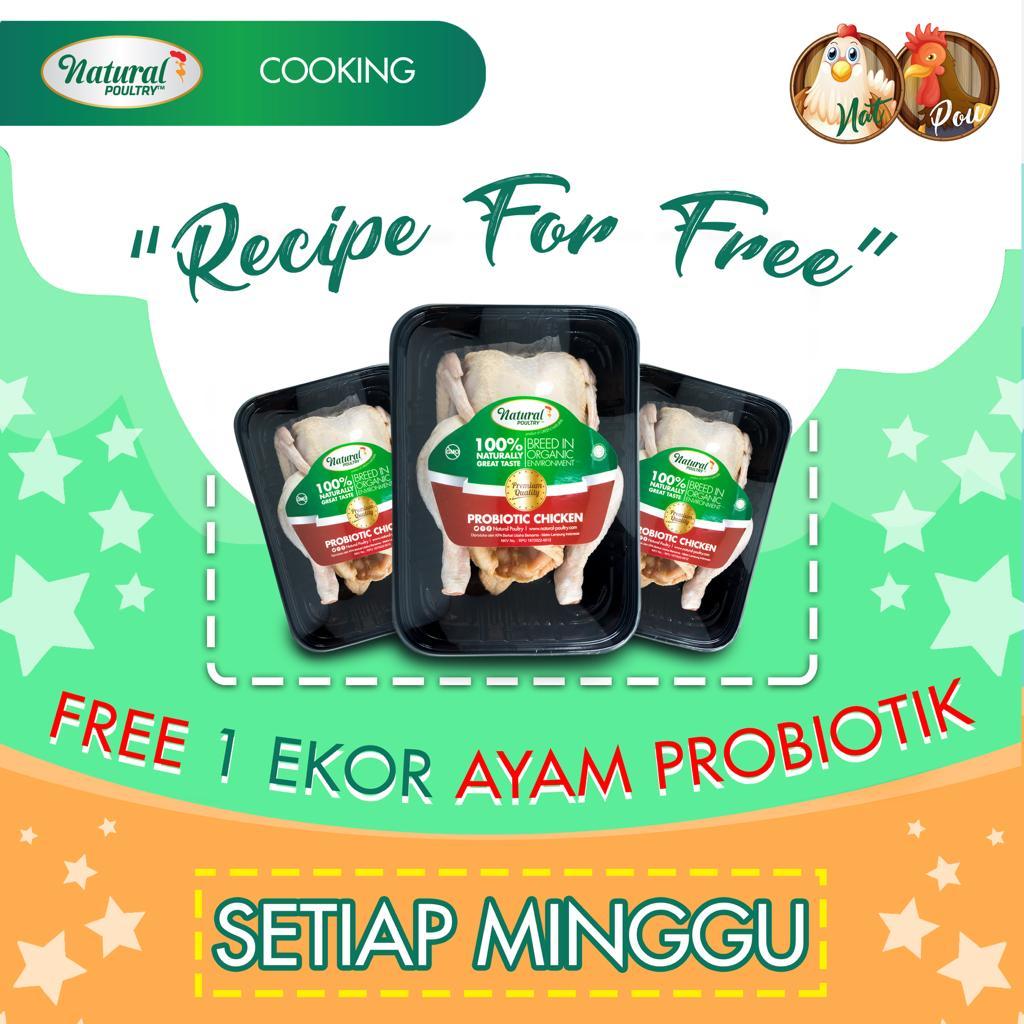 resep masak ayam probiotik natural poultry