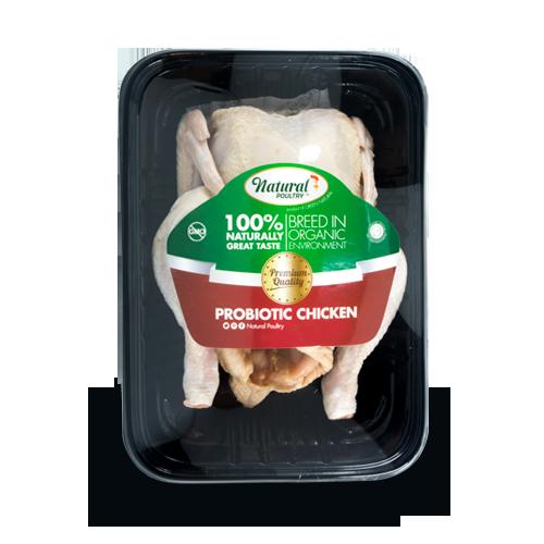 ayam organik natural Poultry