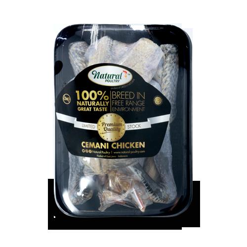 ayam cemani organik
