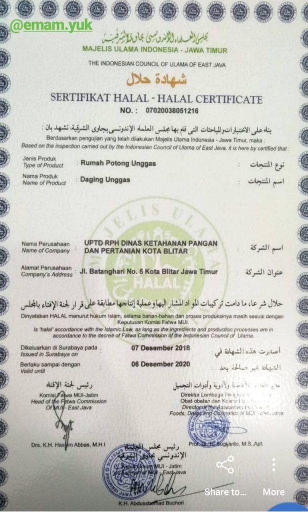 sertifikat halal ayam natural poultry